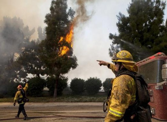 Firefighters battle the so-called Poinsettia Fire in Carlsbad, California May 14, 2014.